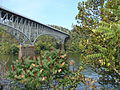 Homestead Grays Bridge.jpg