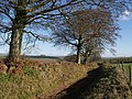 Hookwell Down Lane - geograph.org.uk - 620628.jpg