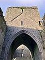 Hore Abbey, Caiseal, Éire - 45671399965.jpg