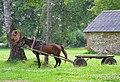 Horse-drawn cart in Kurmene.jpg