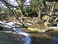Huckles Brook near Ogdens Farm - geograph.org.uk - 1111558.jpg