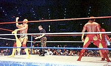 Hogan come WWF World Heavyweight Champion insieme a Brutus Beefcake