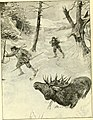 Hunting and trapping stories; a book for boys (1903) (14802320113).jpg