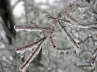 Mid-December 2007 North American winter storms - Image: Ice Storm Kansas