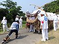 Ichiki Tanabata Dance Cattle 01.JPG