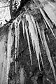 Icy icicles.JPG
