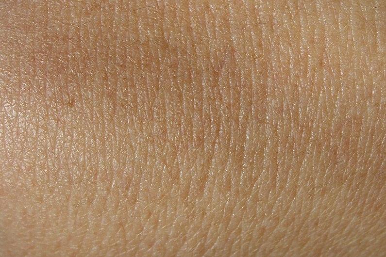 Image skin texture.jpg
