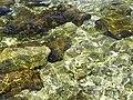 Imerolia, Greece - panoramio (1).jpg