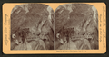 In the heart of Box Canyon, Colo., U.S.A, from Robert N. Dennis collection of stereoscopic views 8.png