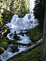 Indian Holes Falls, Willamette National Forest (34758930451).jpg