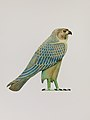 Inlay in the form of the Horus falcon MET DP239686.jpg