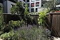 Innenhofgarten im Frühsommer 06.jpg