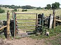 Is it a gate^ Is it a stile^ - geograph.org.uk - 201243.jpg