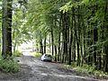 Iserlohn, Germany - panoramio (21).jpg