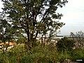 Itupeva - SP - panoramio (167).jpg