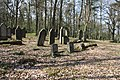 Jüdischer Friedhof Hoyernhagen 20090413 060.JPG