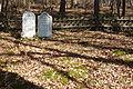 Jüdischer Friedhof Königsfeld 179.JPG