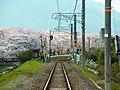 JR和歌山線の線路 御所市にて JR Wakayama line 2012.4.07 - panoramio.jpg