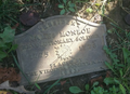 James Monroe Stone.png
