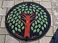 Japanese Manhole Covers (10925427854).jpg