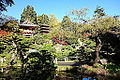 Japanese Tea Garden (San Francisco) - DSC00171.JPG