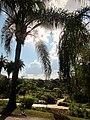 Jardim Botanico Jani Pereira (1).jpg