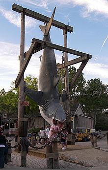 Jaws photo op.jpg