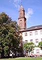 Jesuitenkirche Kastanie Heidelberg.jpg