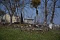 Jevrejsko groblje.jpg