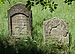 Jewish cemetery Sokolow Malopolski IMGP4671.jpg