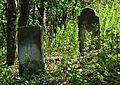 Jewish cemetery Zelechow IMGP3233.jpg
