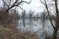 Jezero Vrbova, Savica.jpg