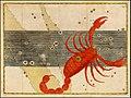 Johann Bayer -- Scorpio.jpg