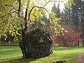John A. Finch Arboretum - IMG 6898.JPG