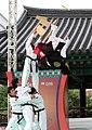 KOCIS Korea Taekwondo Namsan 31 (7628116548).jpg