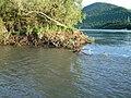 Kamchatka River - panoramio (2).jpg