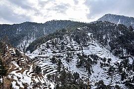 Kandi Pass Snow Mandi Himachal Jan19 D72 9084.jpg