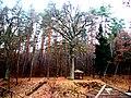 Karmazinų pilkapynas - panoramio.jpg
