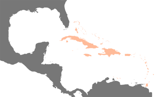 The West Indies in relation to the continental Americas Karte Karibik Inseln.png