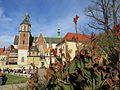 Katedra na Wawelu, jesien 1.JPG
