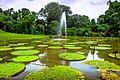 Kebun Raya Bogor 19.jpg