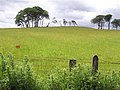 Kendals Hill - geograph.org.uk - 866803.jpg