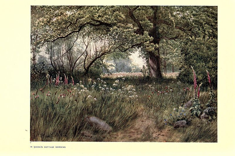 Queen's cottage garden (Kew Gardens) par l'artiste peintre T. Mower Martin en 1908.