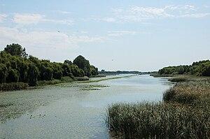 Balaton Uplands National Park - Image: Kis Balaton 1
