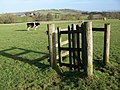 Kissing gate, Stanton Drew - geograph.org.uk - 1670138.jpg