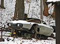 Kit Car Under Construction in Winter.jpg