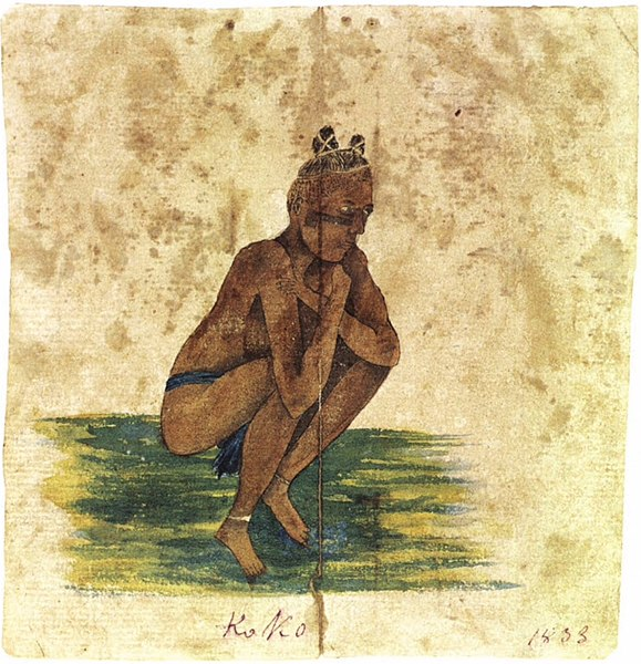 File:Koko, watercolor on paper by Clarissa Armstrong, 1833.jpg