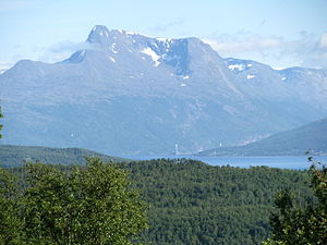 Ofotfjord - The fjord is surrounded by mountains and forested hills