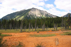 Soil - Iron-rich soil near Paint Pots in Kootenay National Park, Canada