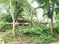 Kuburan Desa Buniasih, Maleber, Kuningan - panoramio.jpg